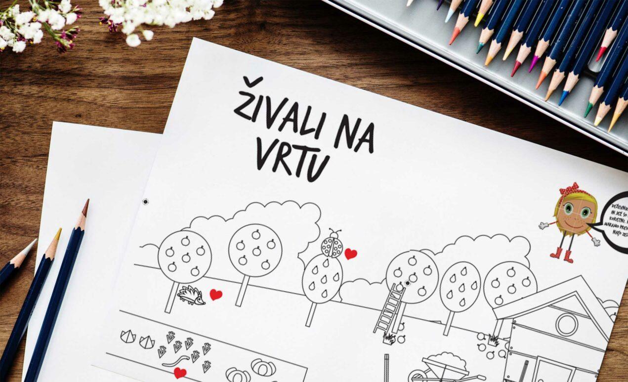 graficno_oblikovanje
